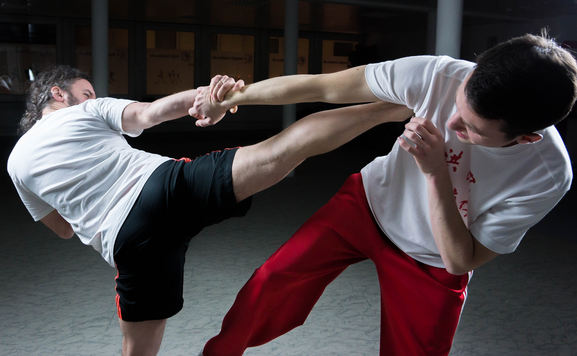picture of two men practicing martial arts