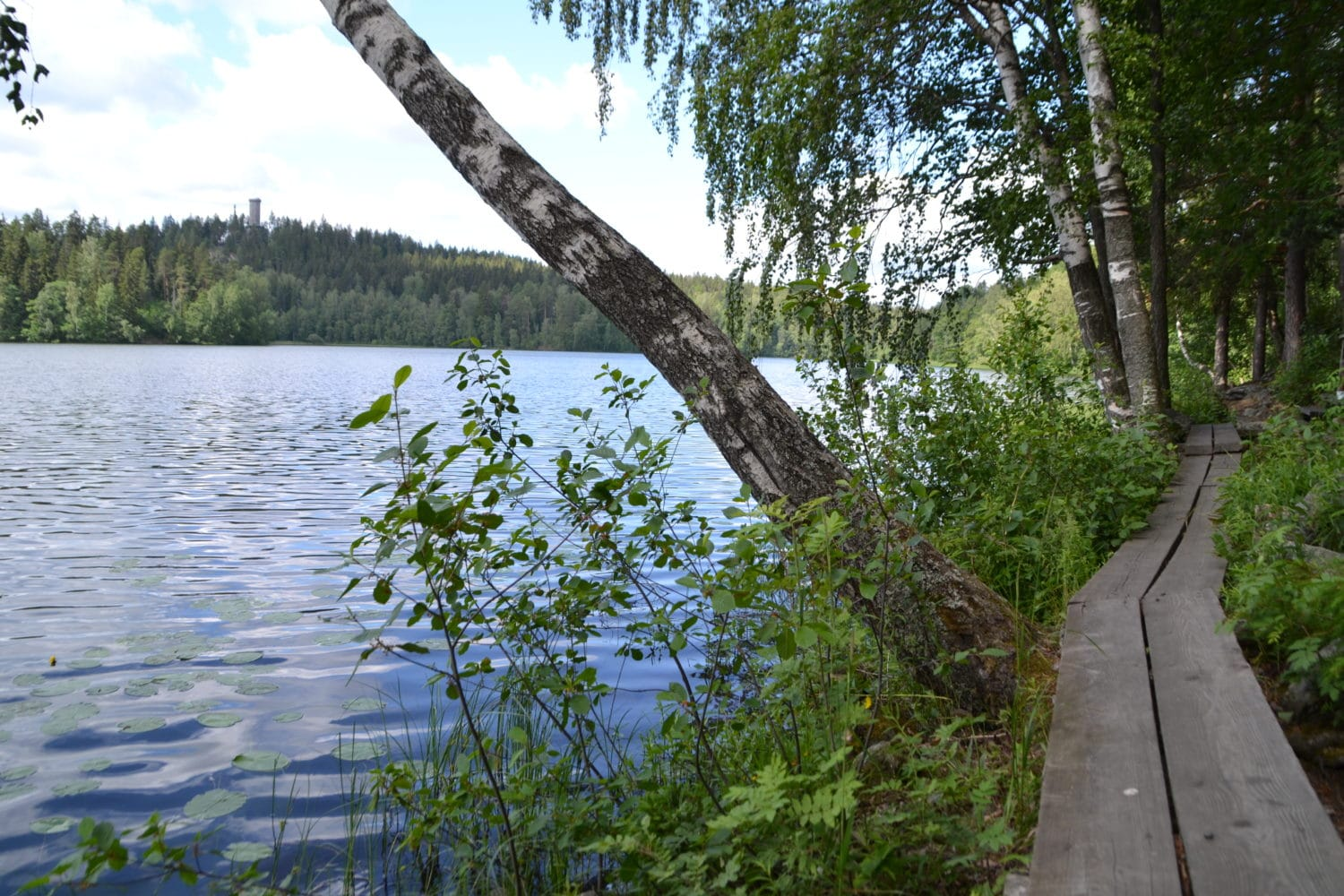 picture of a nature trail in Hameenlinna area