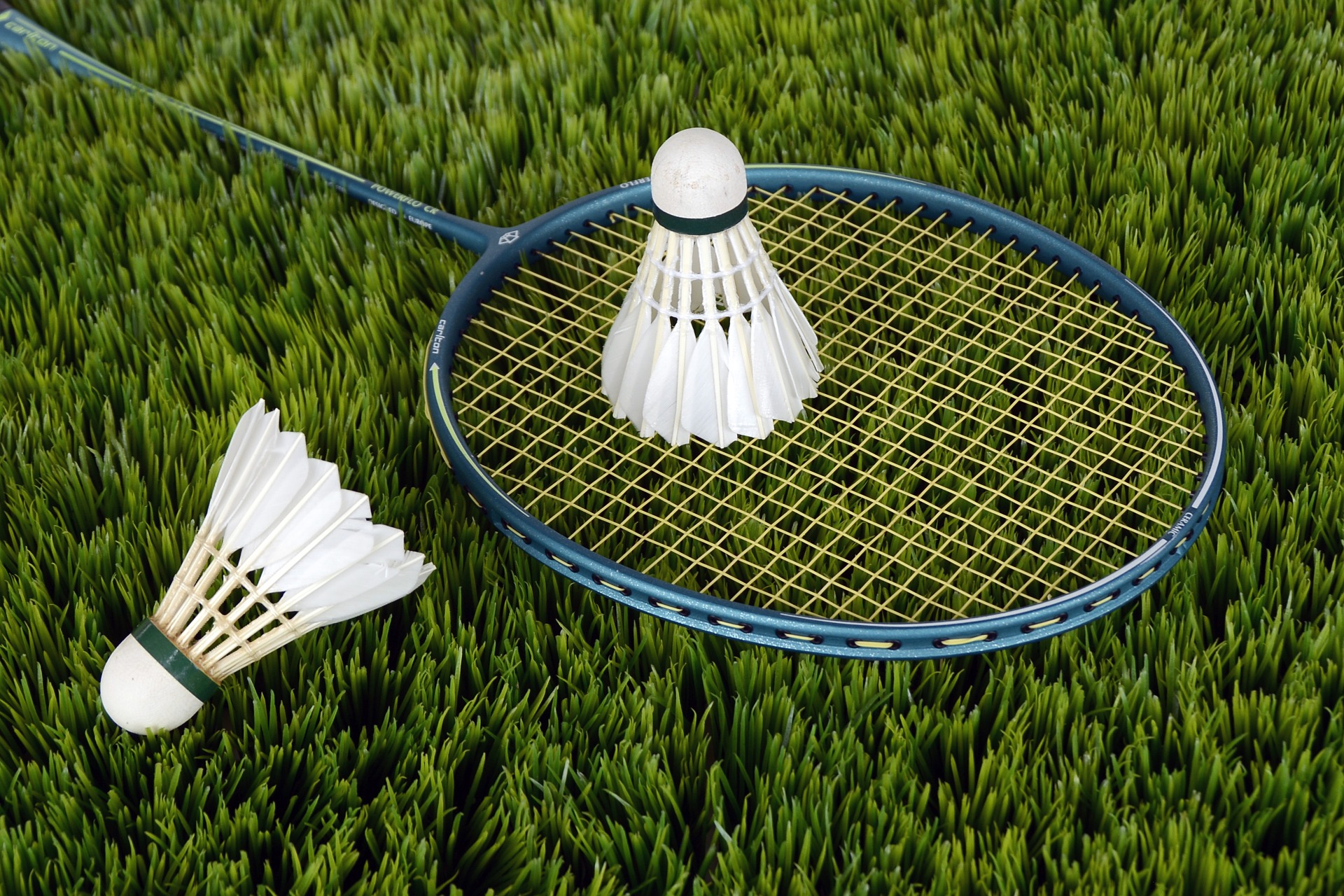 picture of two shuttlecocks and badminton racket