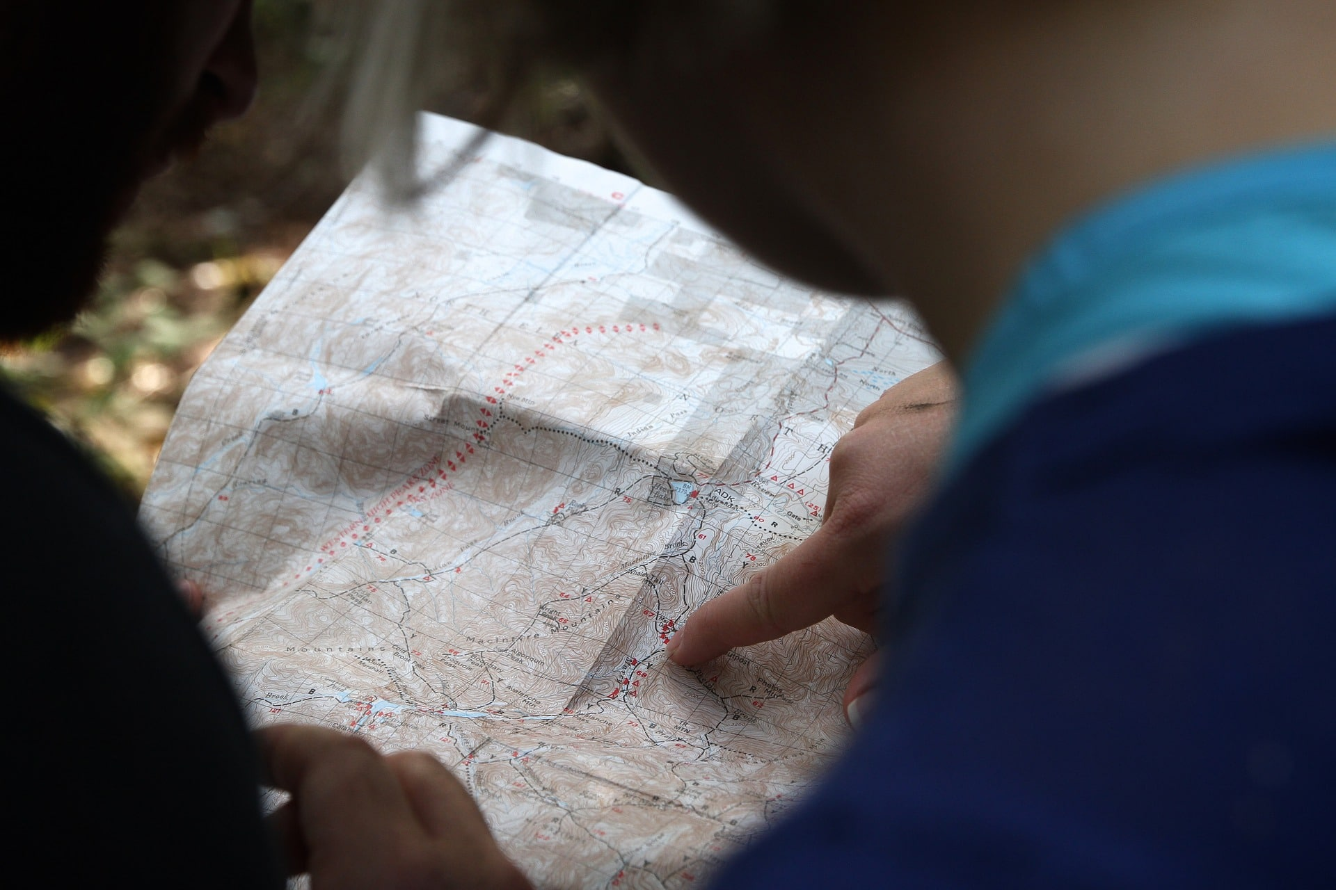 picture of two orienteers exploring map