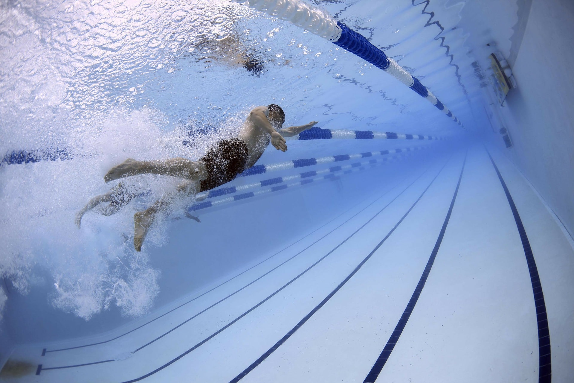 picture of a swimmer swimming in pool