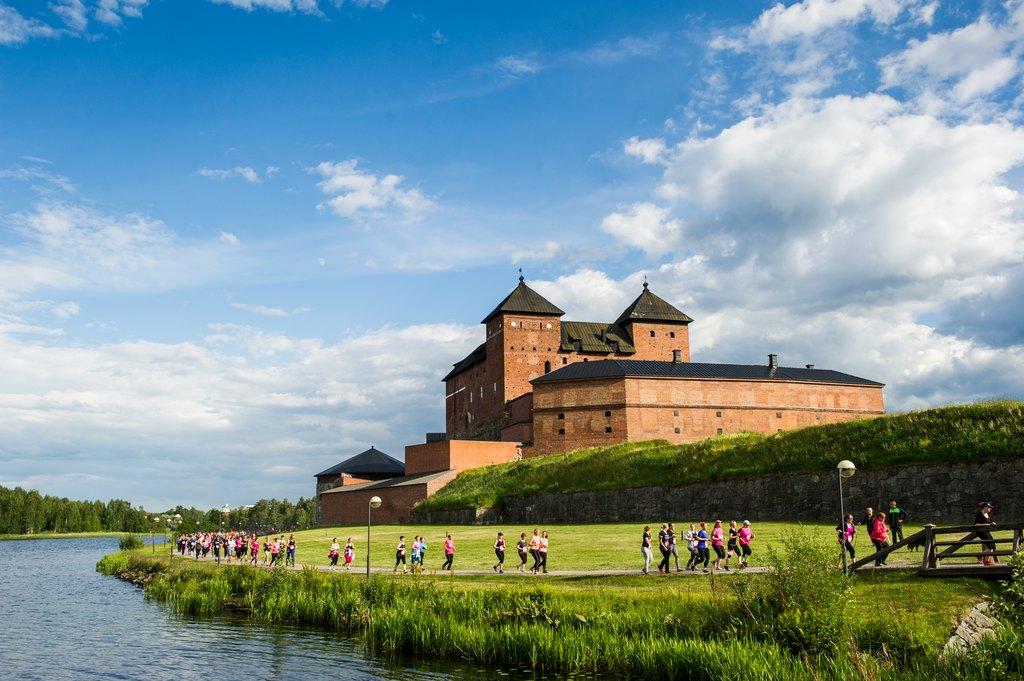 picture of the Häme castle