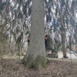 Kuvassa puun takana kaksi naista