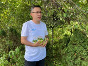 Mustafa Bazu omenapuutarhasta