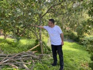 Mustafa omenapuutarhassa